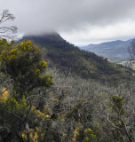 Highlights of the Newell Highway