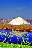 The Salt Mound