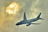 ANA's B-787-8, JA804A, Inside Clouds