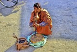 Snake Charmer On The Agra Road: No More