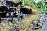 Traditional Sugar Cane Distillery