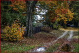New Hampshire Autumn Backroad