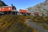 Rorbuer (fisherman's cabins)