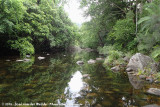 Waterview Creek
