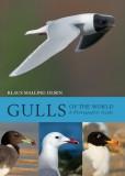 Gulls of the World