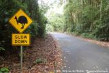 Cassowary county