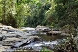 Upper Barron River