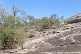 Rocky landscape of Granite Gorge