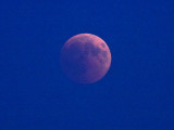 The eclipsed moon is above the horizon - but the sky is not yet dark. It's just after sunset.