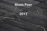Winterland '76 - Blues Peer 2017