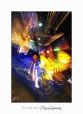 02 2017 I Nice Carnaval_MG_0615.jpg