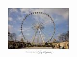 03 2017 B _MG_1264 Paris grande roue.jpg