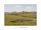 05 2017 A IMG_7881 Toscane campagne .jpg