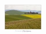 05 2017 B IMG_7954 Toscane campagne .jpg