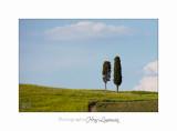 05 2017 B IMG_7982 Toscane campagne .jpg