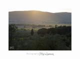 05 2017 B IMG_8289 Toscane Campagne .jpg