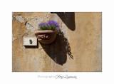 05 2017 B IMG_8341 Toscane Volterra .jpg