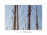 2017 09 IMG_1038 Voiliers marine Ste marguerite.jpg
