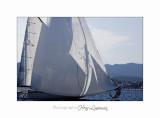 2017 09 IMG_1429 marine cannes voiliers sortie en mer.jpg