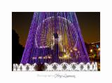 2017 12 _MG_2535 nice illuminations lumières noel.jpg