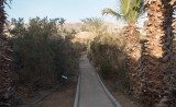Eilat Banding Station