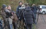 Birders at Ottenby