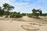 Loonse- en Drunense duinen