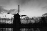 Windmill near Amsterdam