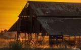 Kellogue Creek Barn  3