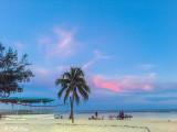 Higgs Beach Sunset  9