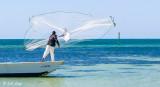 Throw Net Bait Fishing  5