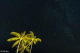 Lizard Island Night Sky  1