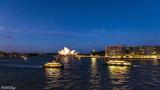 Sydney Harbor  10