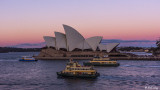 Sydney Harbor  16
