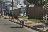 Antananarivo Street Scene   6