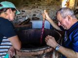 At the wine cellar