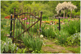 Bucks County Scenic Photography through the Seasons