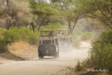 Route du parc Tarangire