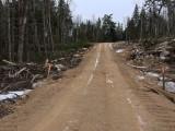 loggingroadshot281220181.jpg
