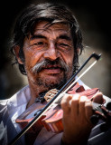 Fiddler of  Jacodu