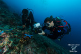 Fotosub in azione , Underwater photographer in action