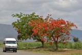 Swaziland, from Kruger Park to Santa Lúcia