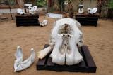 Southern Exit of Kruger Park