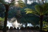 Pena Palace garden