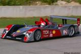 MARCO WERNER Audi Sport North America