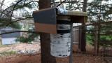 Chickadee box under the pine trees