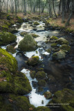 Ice melt at a creek