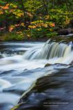 Upper cascades at Bond Falls with branch