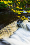 Bond Falls, close up with branch
