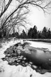 Flambeau River, Black & white